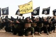 Borba saznaje: Ulcinjanin i Rožajac nestali na ratištu u Siriji