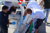 U Italiji se odmotava klupko: Kotoranin vrbovao pomorce za šverc hašiša!