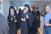 Patrijarh Irinej stigao u Crnu Goru