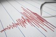 Indoneziju pogodio zemljotres od 7,3 Rihtera