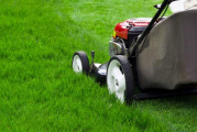 Kazne i za one koji ne pokose travu oko svojih imanja