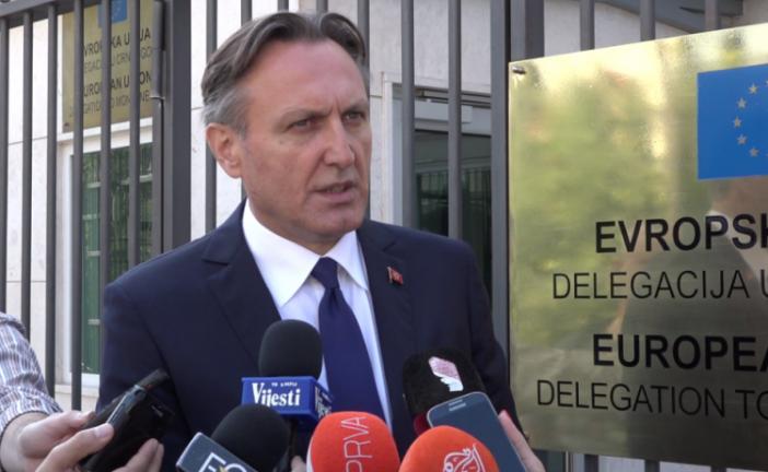 Krivokapić: Finansijska i politička podrška EU došla kad je najpotrebnije