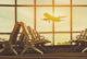 Austrija prekida aviosaobraćaj sa zemljama Zapadnog Balkana