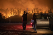 U požarima u Kaliforniji tri osobe poginule, evakuisano 70.000 ljudi
